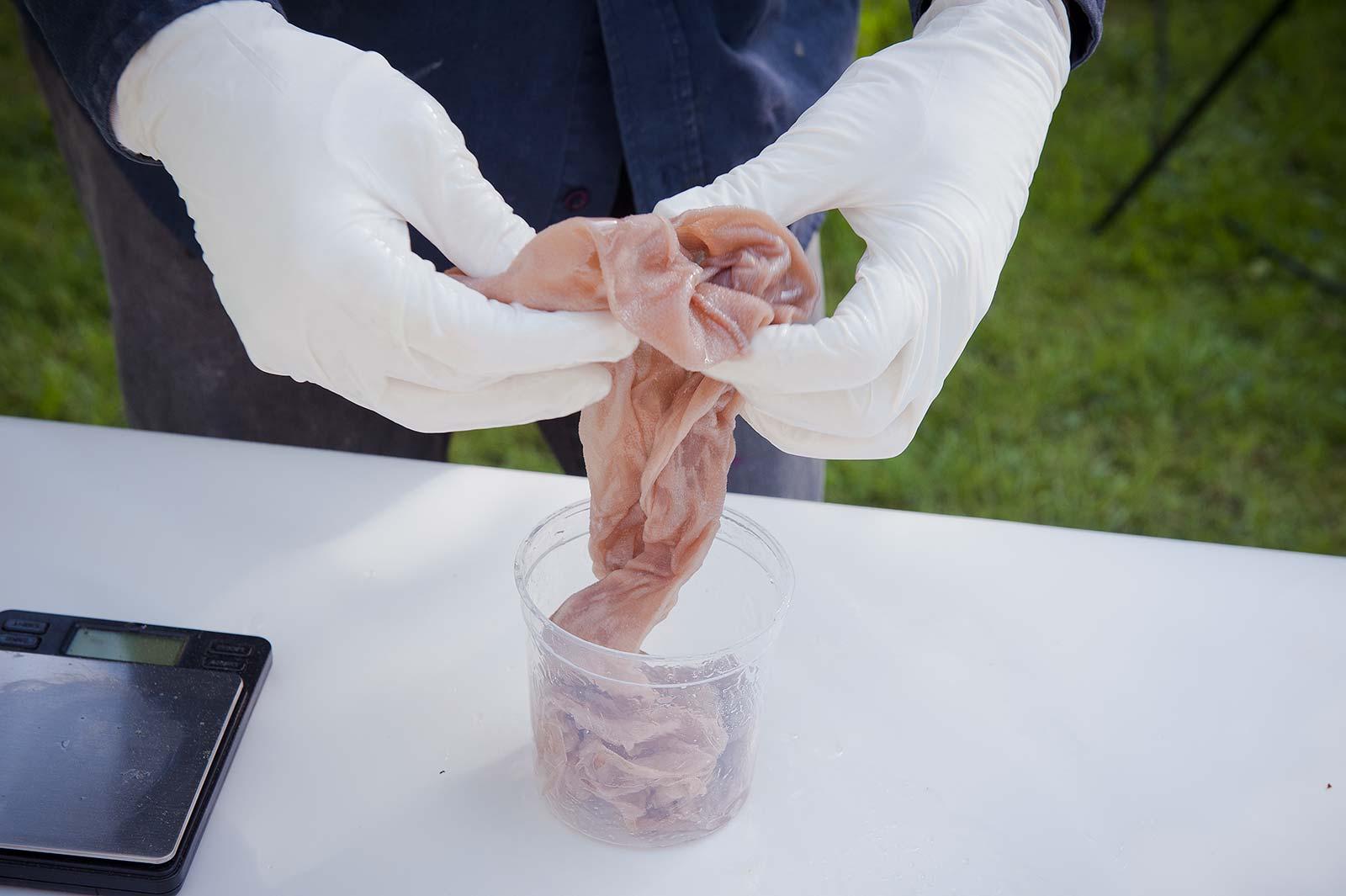 Präparierung eines Strumpfes mit Epoxidharz für eine Installation am Kulturort Weiertal